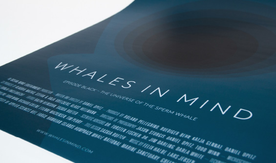 Whales In Mind